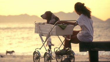Woman with a dog in a baby stroller